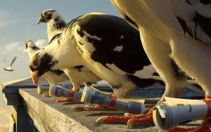 avant servicios recepcion palomas