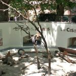 Foso de los monos de la antigua Casa de fieras del Retiro donde se alojaban los Mandriles