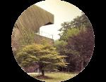 Jardinería para empresas - AVANT Servicios