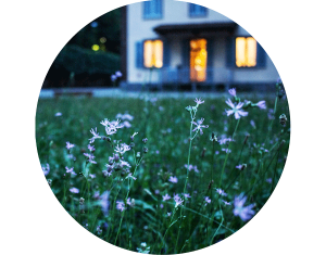 Jardinería para particulares - AVANT Servicios