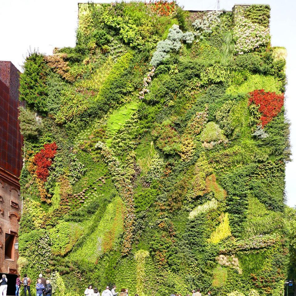 Jardín vertical en el Caixa Forum Madrid