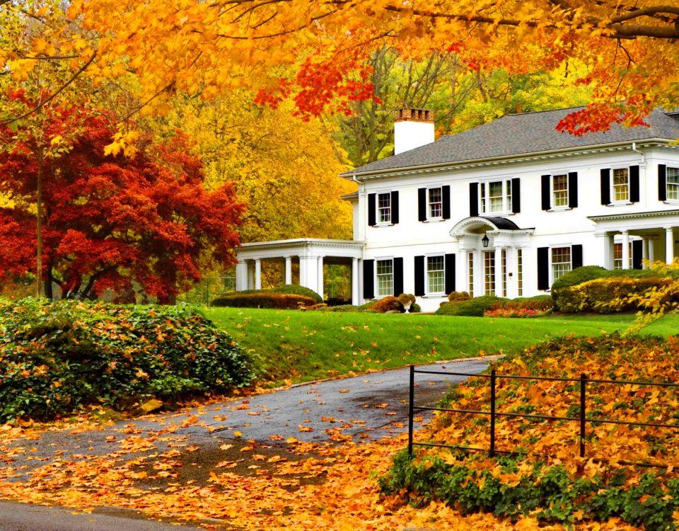 Limpieza de otoño en el hogar. Consejos y recomendaciones